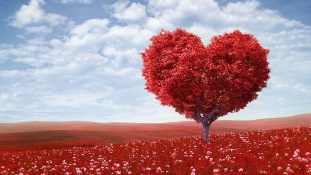 Lời nói ngọt ngào trong tình yêu như thế nào?